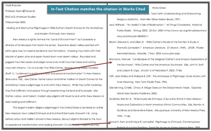 chicago in text citation website example