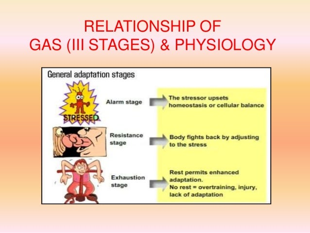 alarm stage of the general adaptation syndrome example