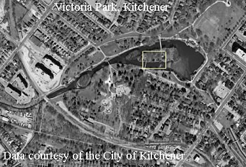 example of quaternary in kitchener waterloo