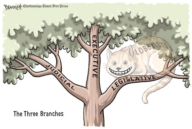 judicialbranch example in cartoon pictures