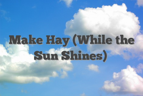 make hay while the sun shines example sentence